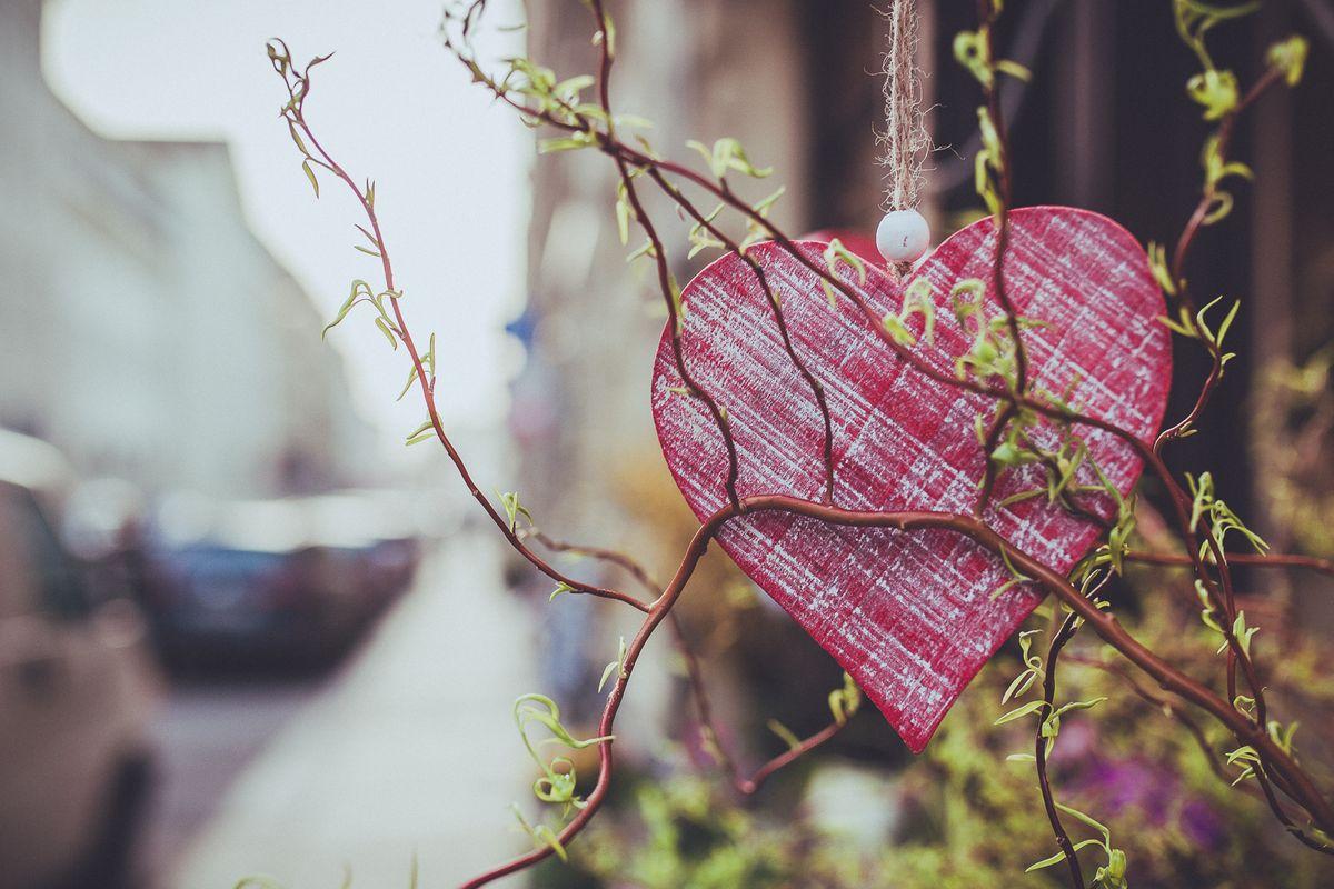 Ein Viertel mit Herz Foto: Stephan Böhlig